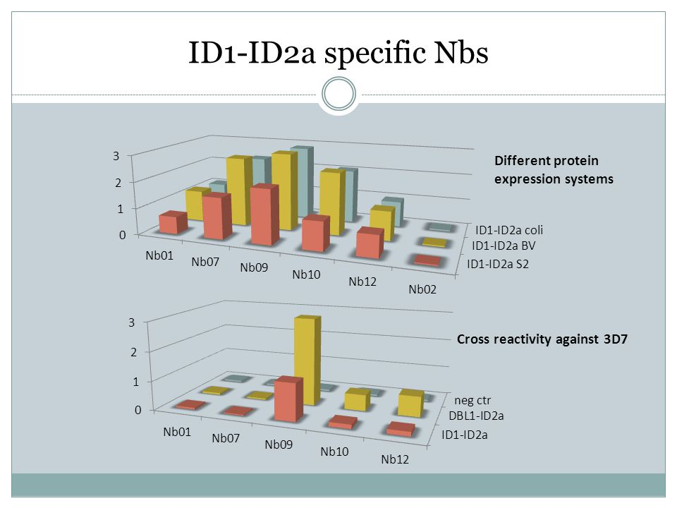 ID1-ID2a specific Nbs Different protein expression systems