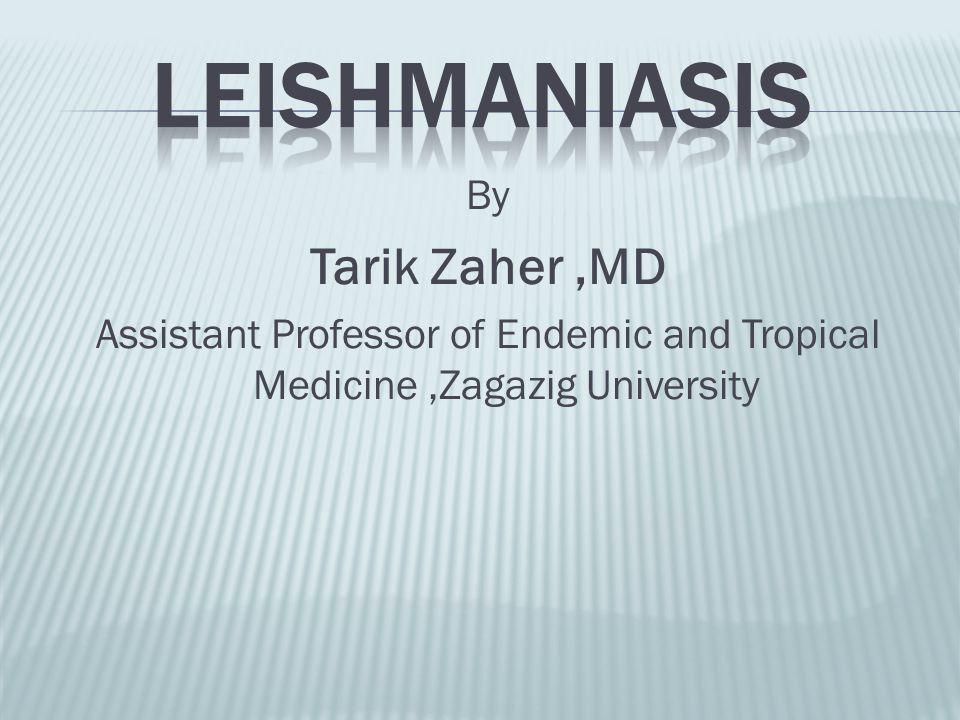Leishmaniasis Tarik Zaher ,MD By