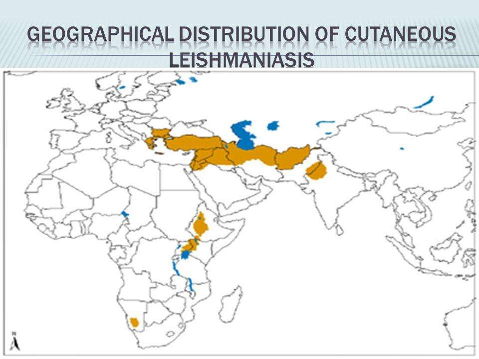 Geographical distribution of cutaneous leishmaniasis