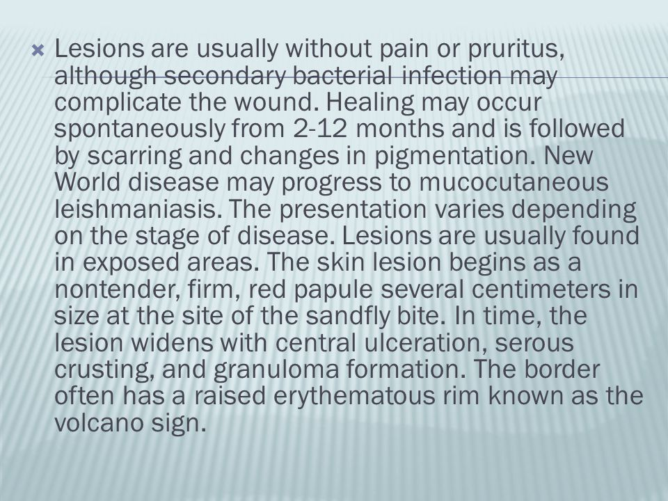 Lesions are usually without pain or pruritus, although secondary bacterial infection may complicate the wound.