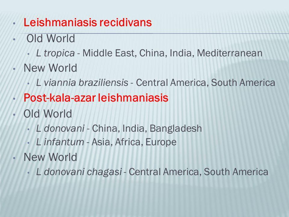 Leishmaniasis recidivans Old World New World