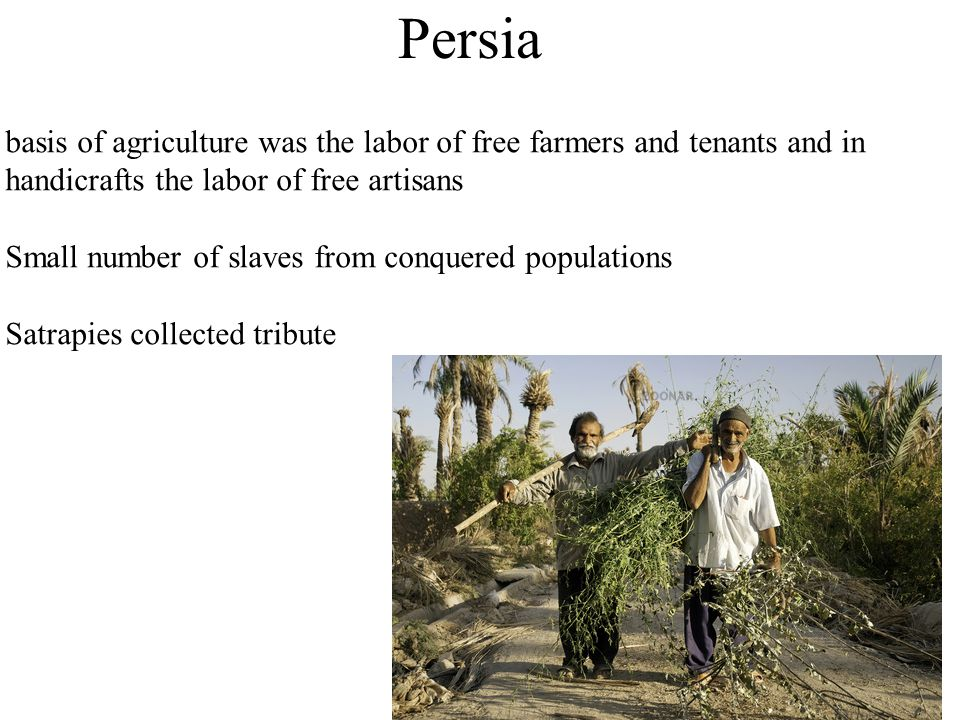 Persia basis of agriculture was the labor of free farmers and tenants and in handicrafts the labor of free artisans.