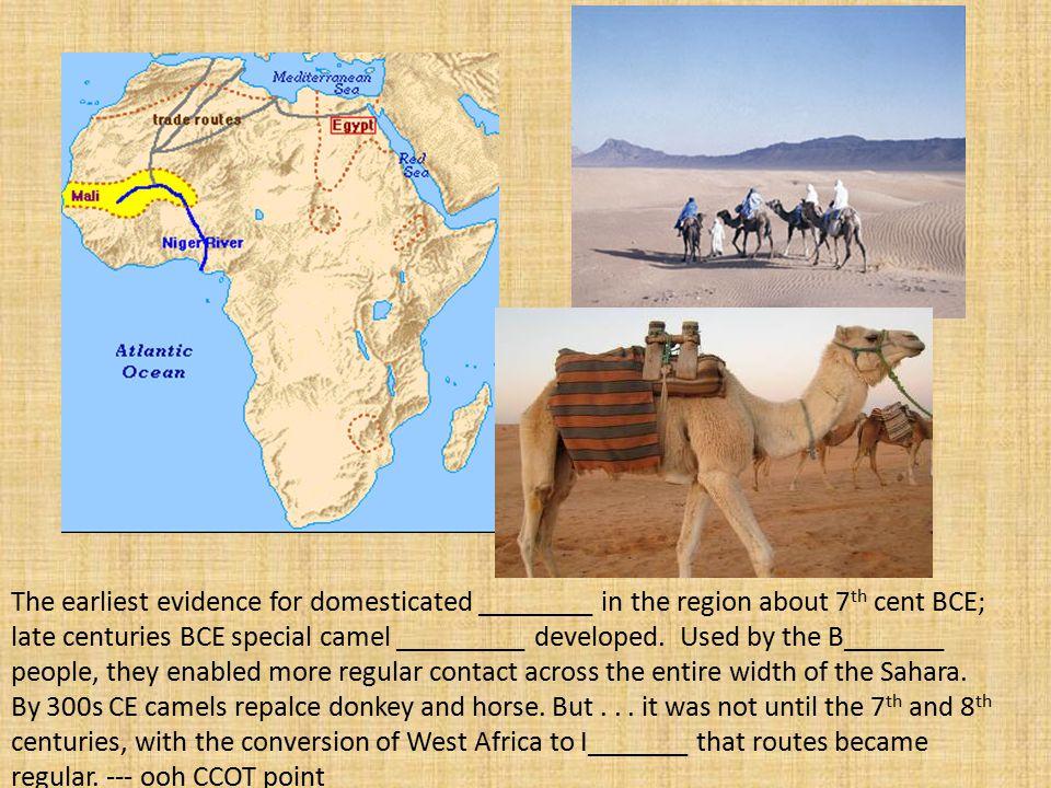 http://www.shiloh.k12.ca.us/Staff_webpages/sehrler/history2.htm Camels Berber.