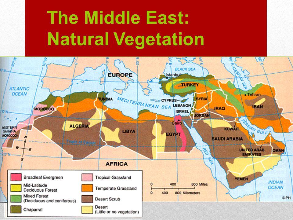 The Middle East: Natural Vegetation