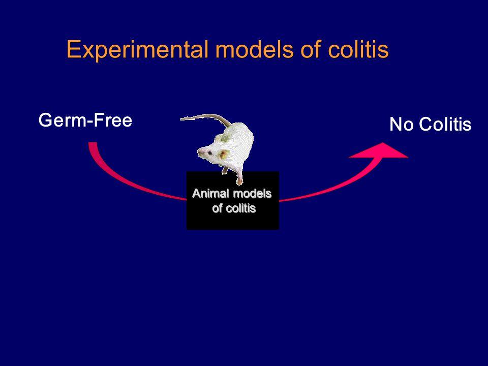 Experimental models of colitis