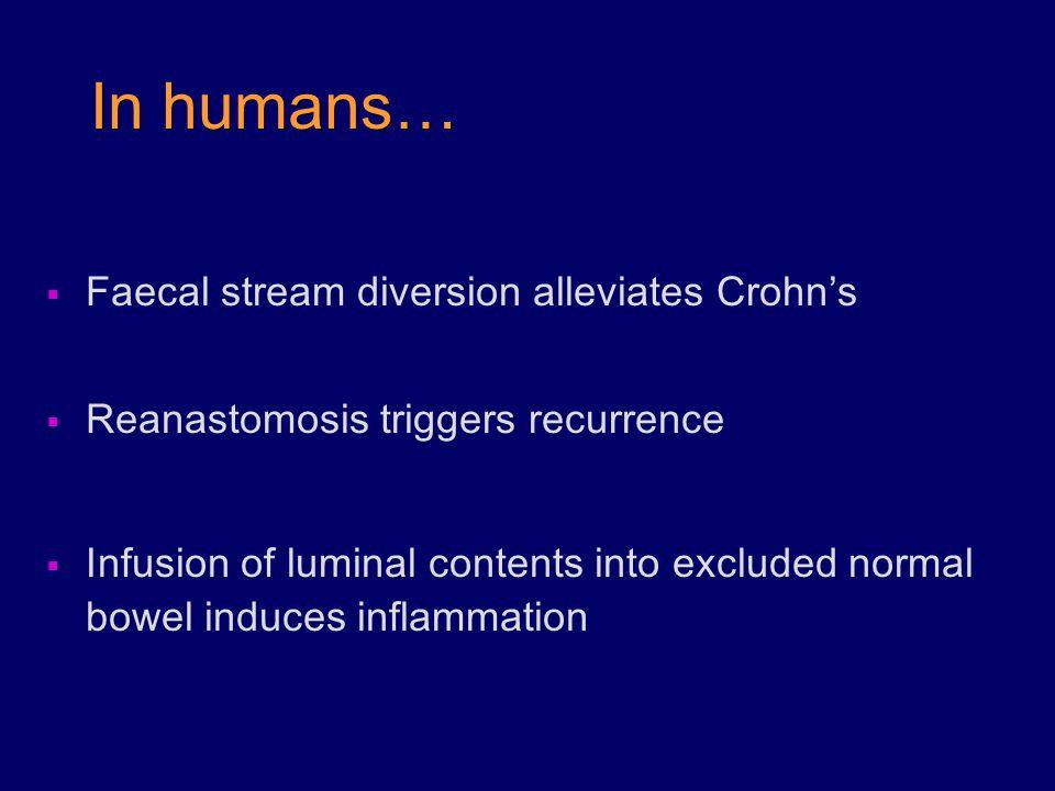 In humans… Faecal stream diversion alleviates Crohn's