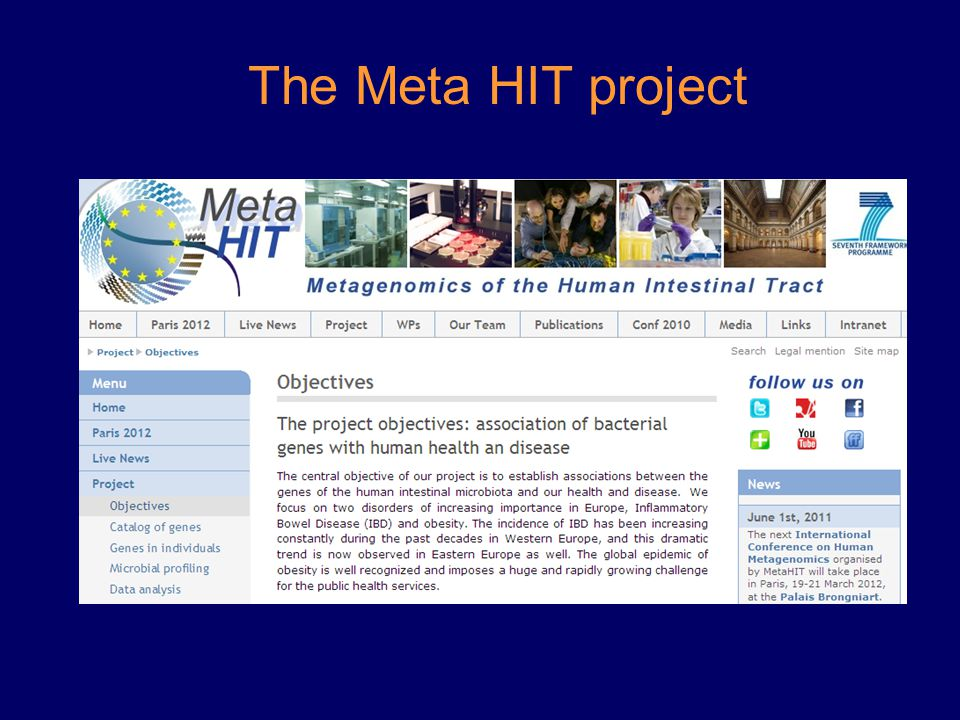 The Meta HIT project