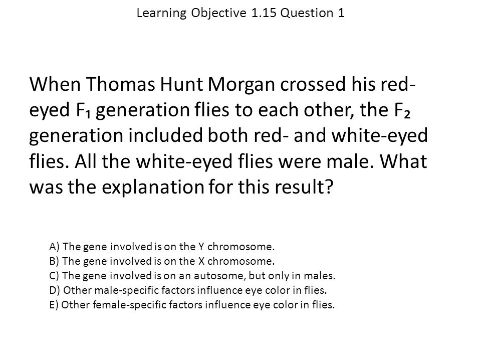 Learning Objective 1.15 Question 1