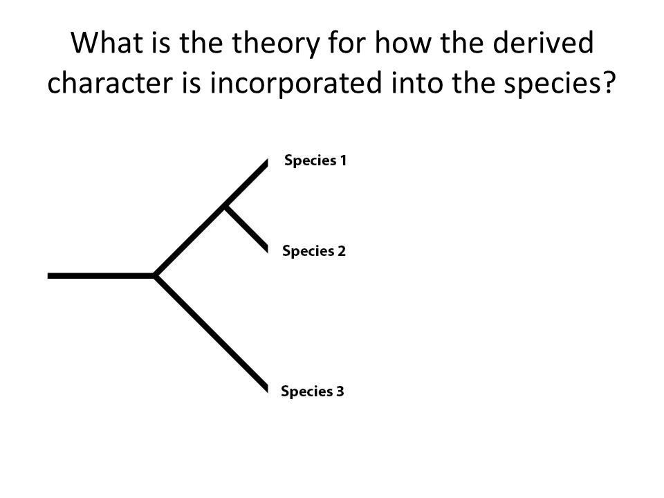 What is the theory for how the derived character is incorporated into the species