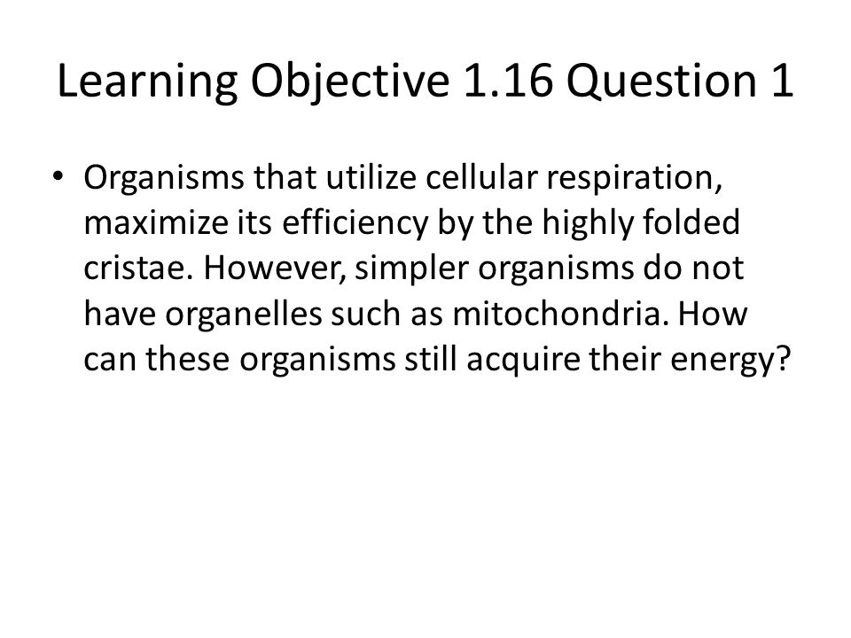Learning Objective 1.16 Question 1