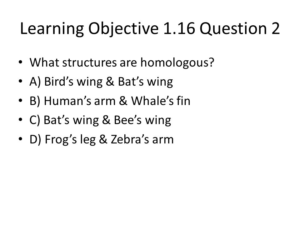 Learning Objective 1.16 Question 2
