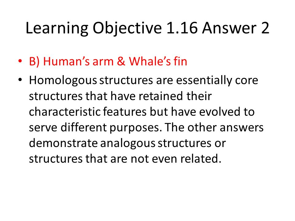 Learning Objective 1.16 Answer 2