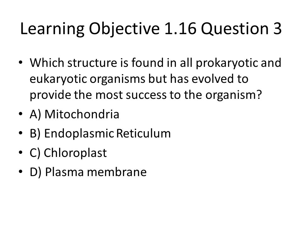 Learning Objective 1.16 Question 3