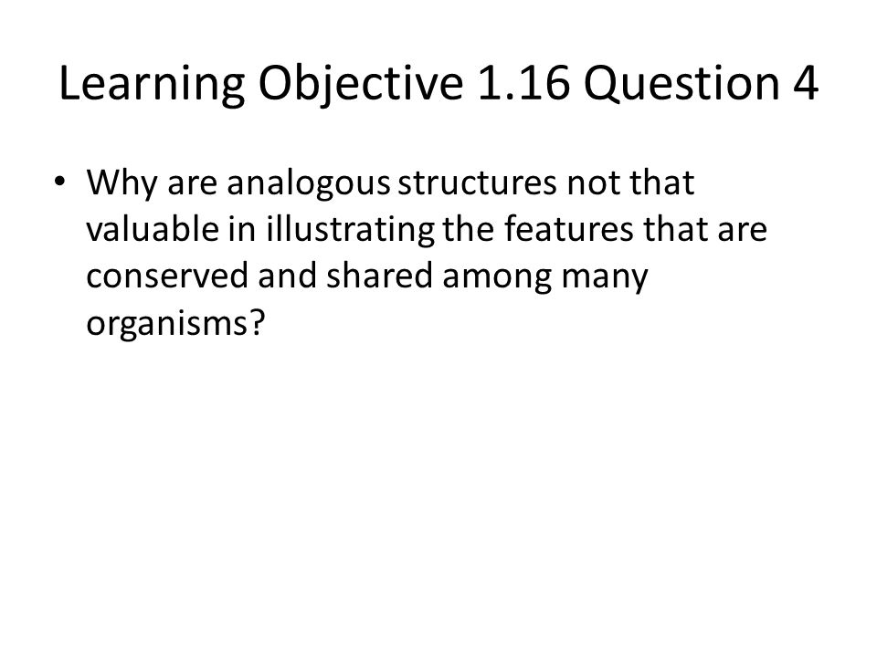 Learning Objective 1.16 Question 4