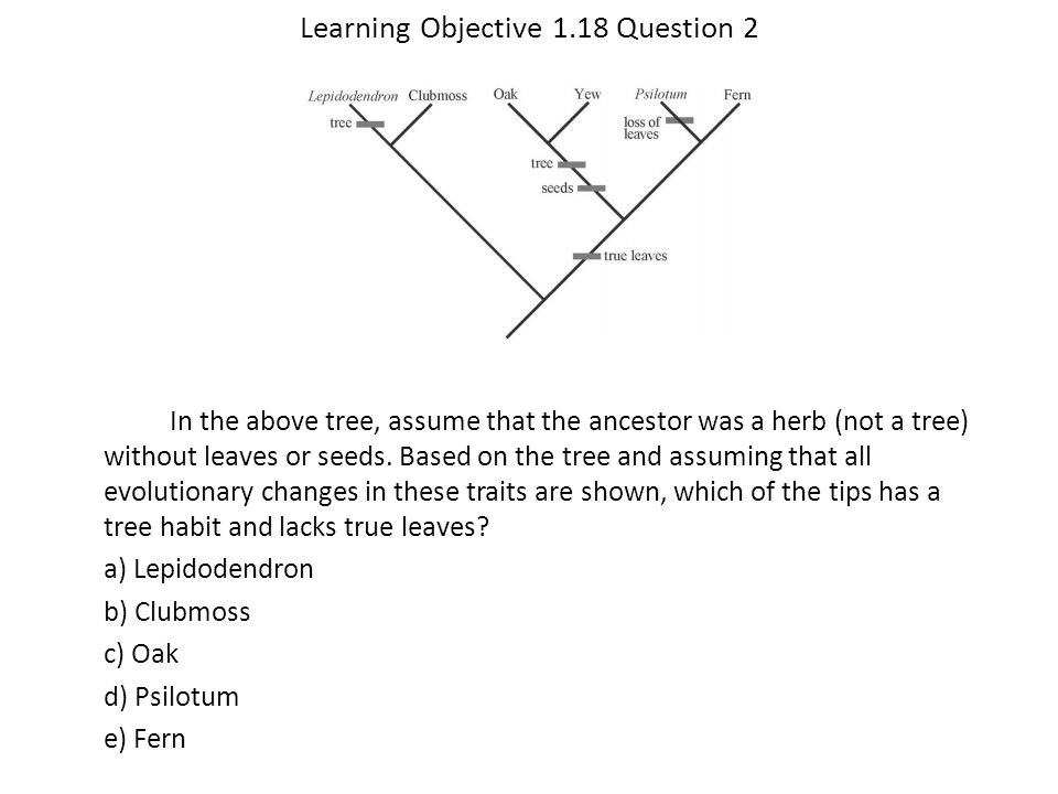 Learning Objective 1.18 Question 2