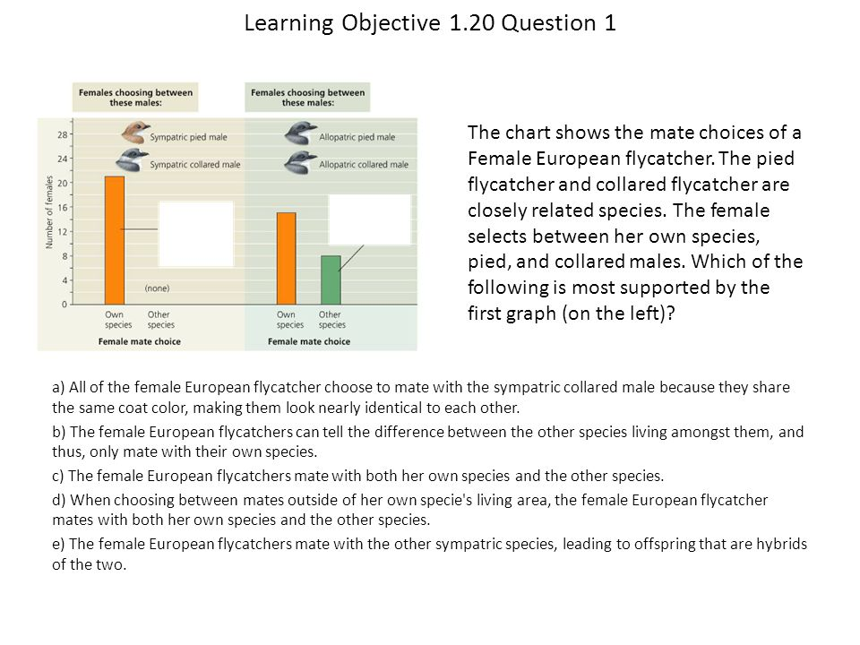 Learning Objective 1.20 Question 1