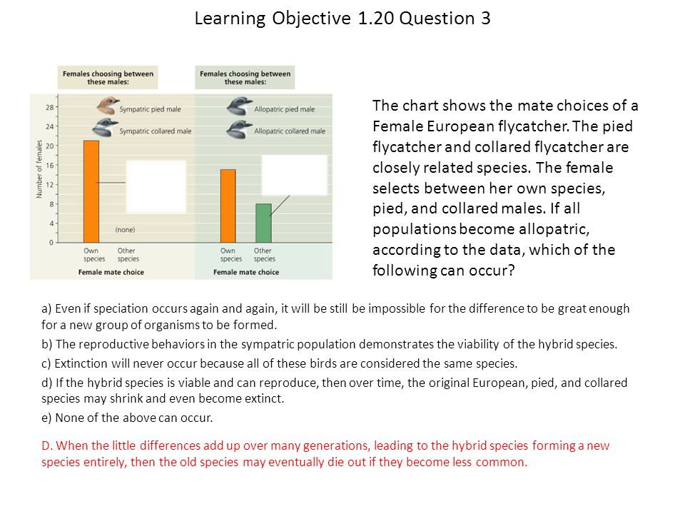 Learning Objective 1.20 Question 3