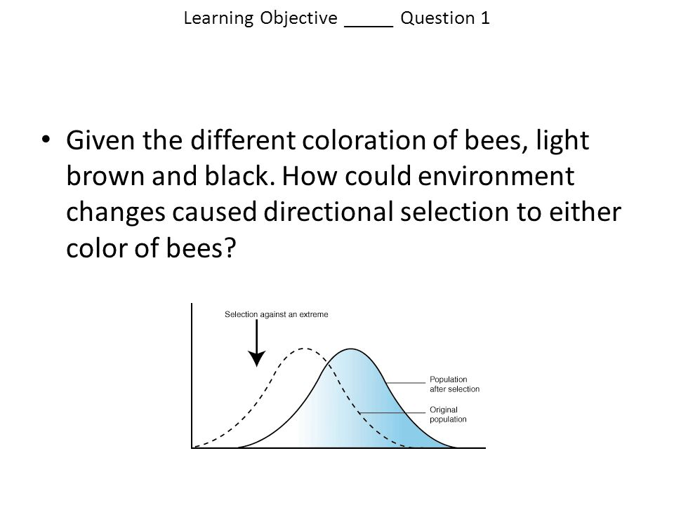 Learning Objective _____ Question 1