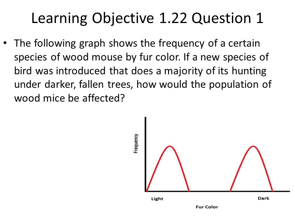 Learning Objective 1.22 Question 1