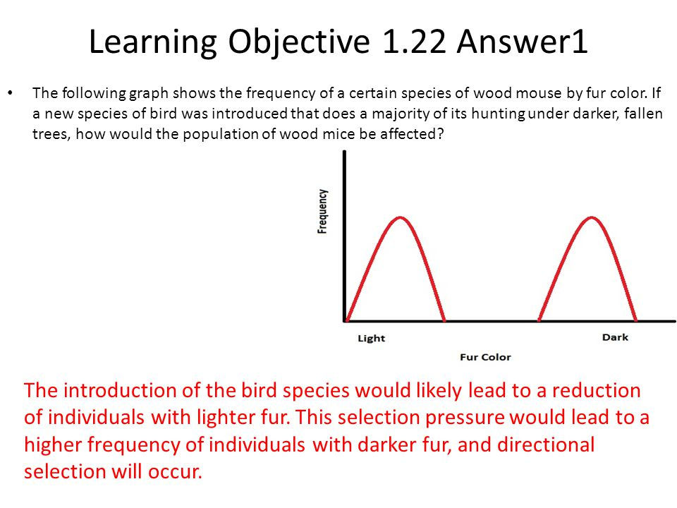 Learning Objective 1.22 Answer1