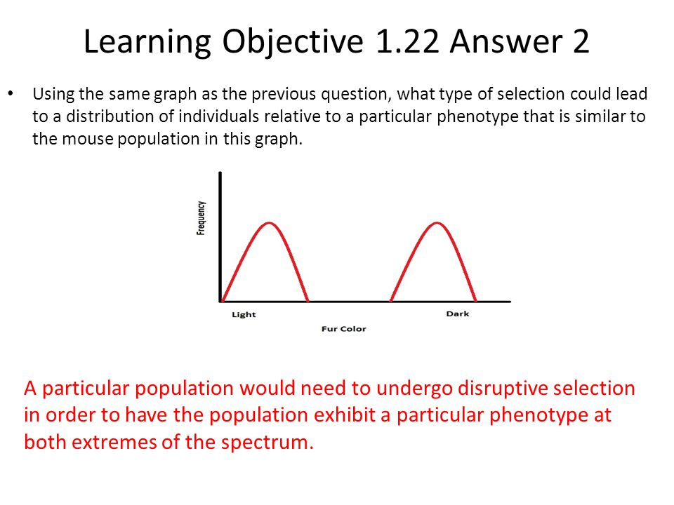 Learning Objective 1.22 Answer 2