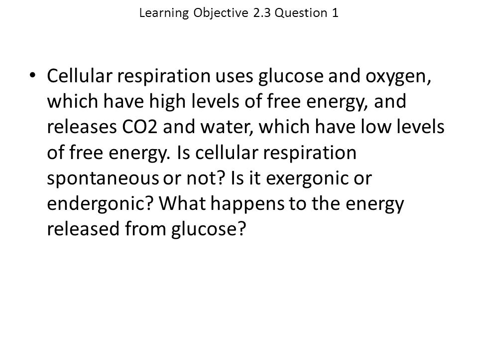 Learning Objective 2.3 Question 1