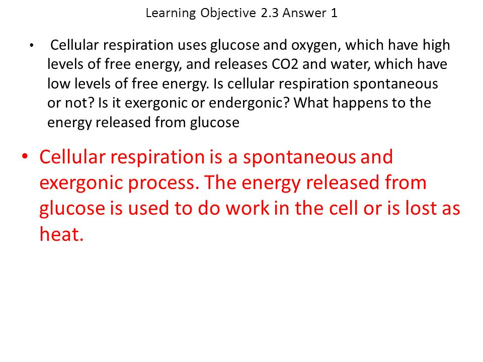 Learning Objective 2.3 Answer 1