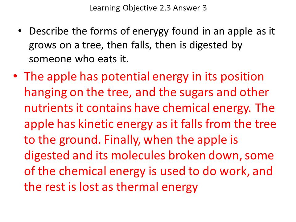 Learning Objective 2.3 Answer 3