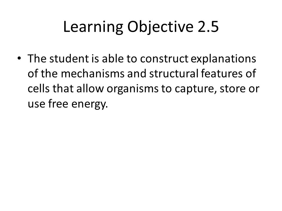 Learning Objective 2.5