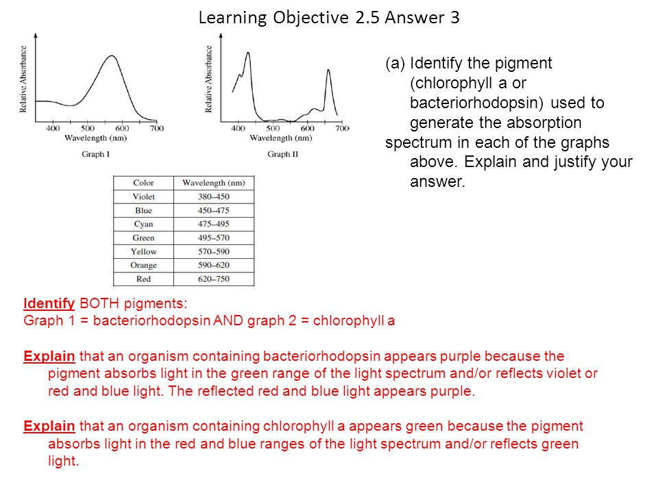 Learning Objective 2.5 Answer 3