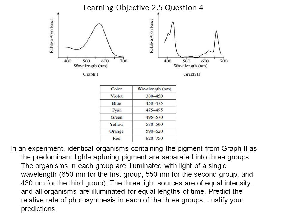 Learning Objective 2.5 Question 4