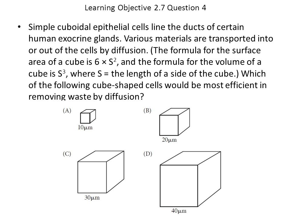 Learning Objective 2.7 Question 4