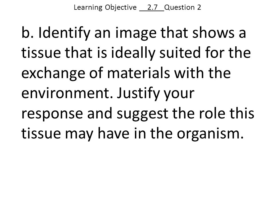Learning Objective __2.7_ Question 2