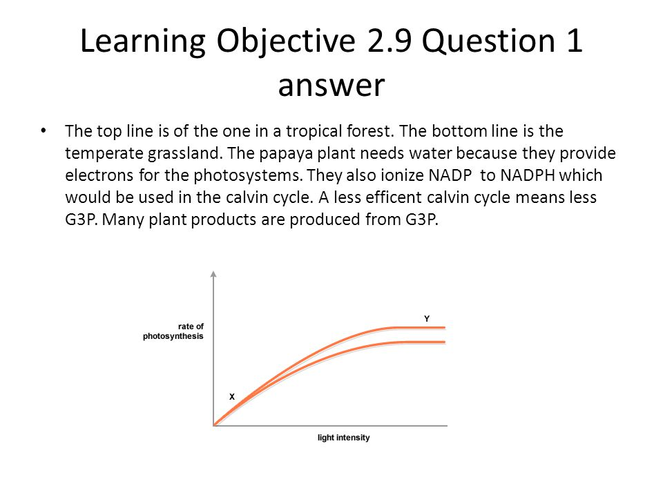 Learning Objective 2.9 Question 1 answer
