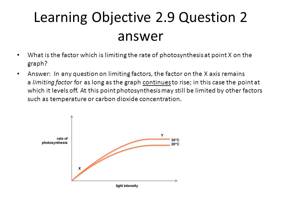 Learning Objective 2.9 Question 2 answer