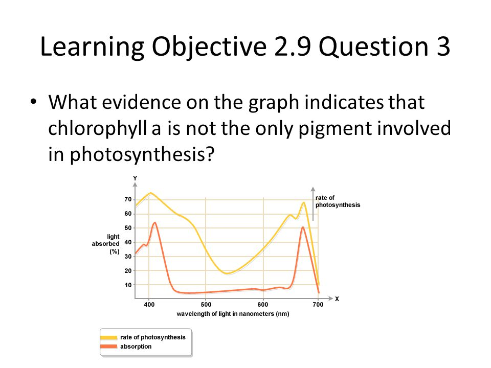 Learning Objective 2.9 Question 3
