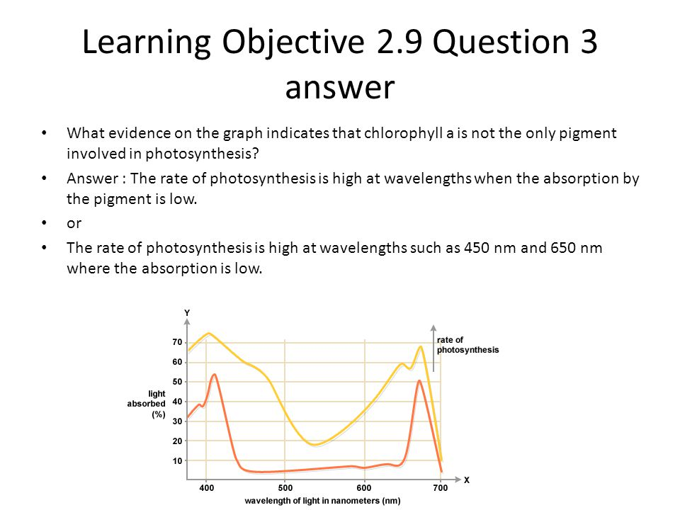 Learning Objective 2.9 Question 3 answer