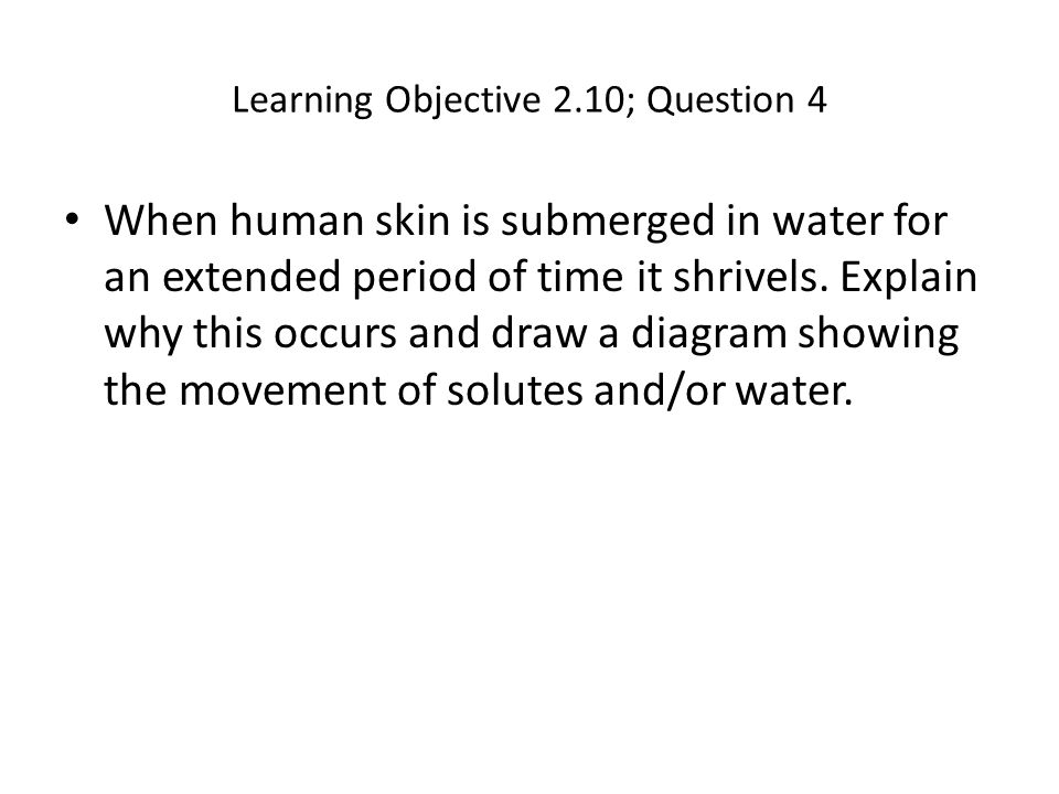 Learning Objective 2.10; Question 4