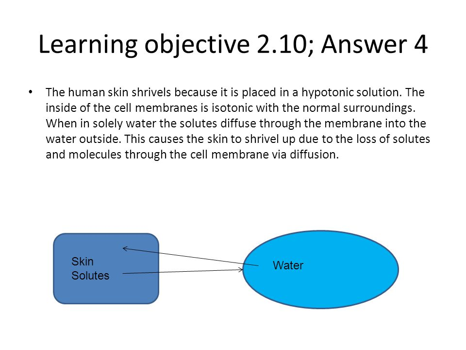 Learning objective 2.10; Answer 4