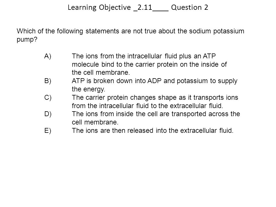 Learning Objective _2.11____ Question 2