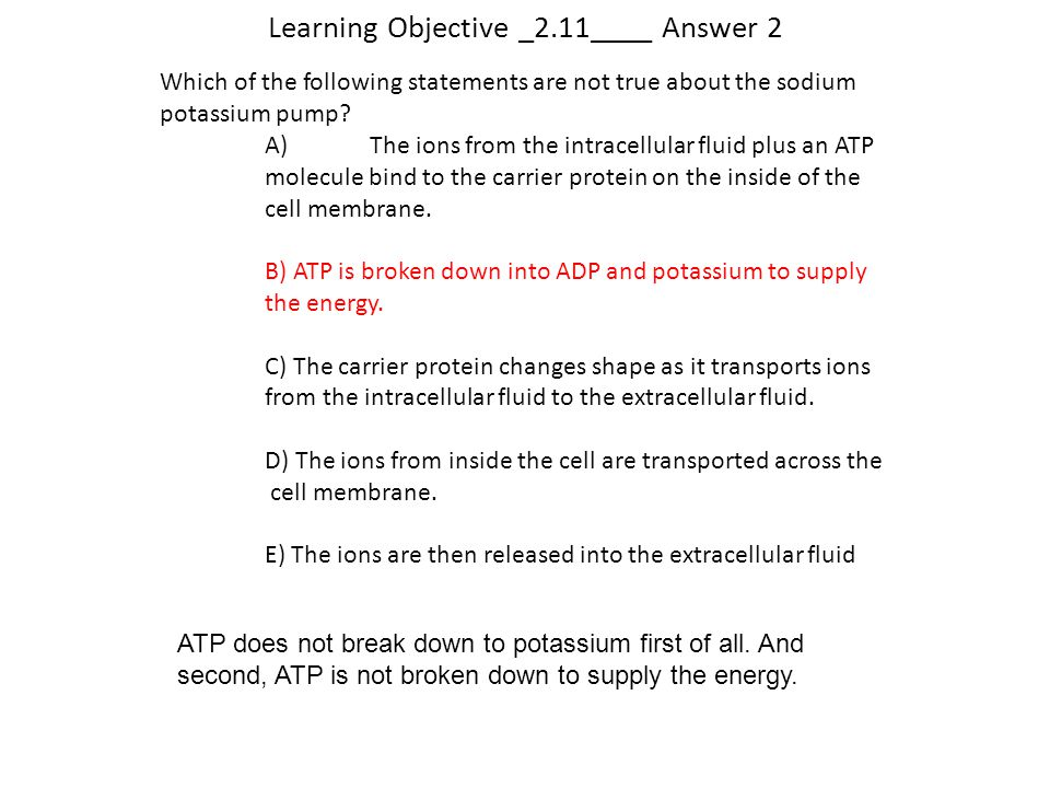 Learning Objective _2.11____ Answer 2