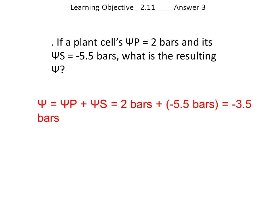 Learning Objective _2.11____ Answer 3