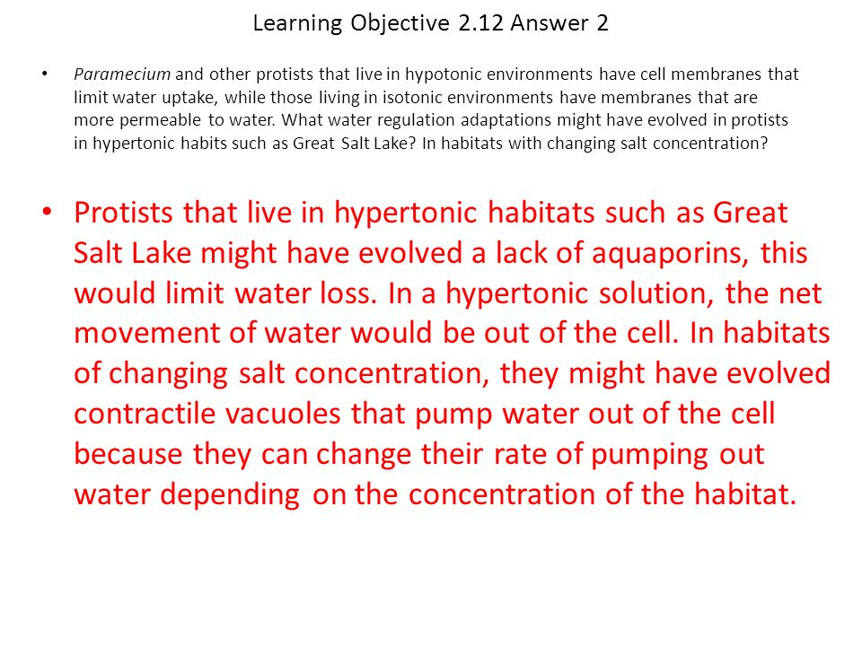 Learning Objective 2.12 Answer 2