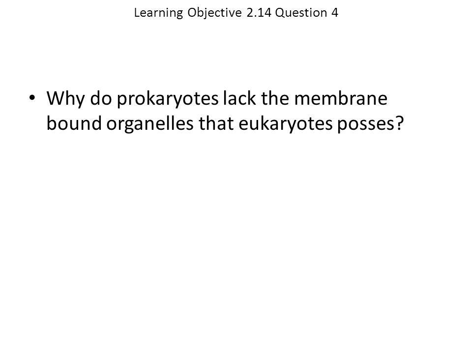 Learning Objective 2.14 Question 4
