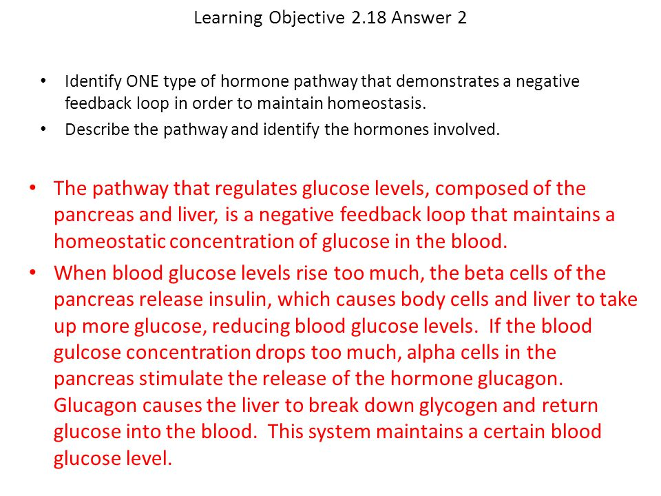 Learning Objective 2.18 Answer 2