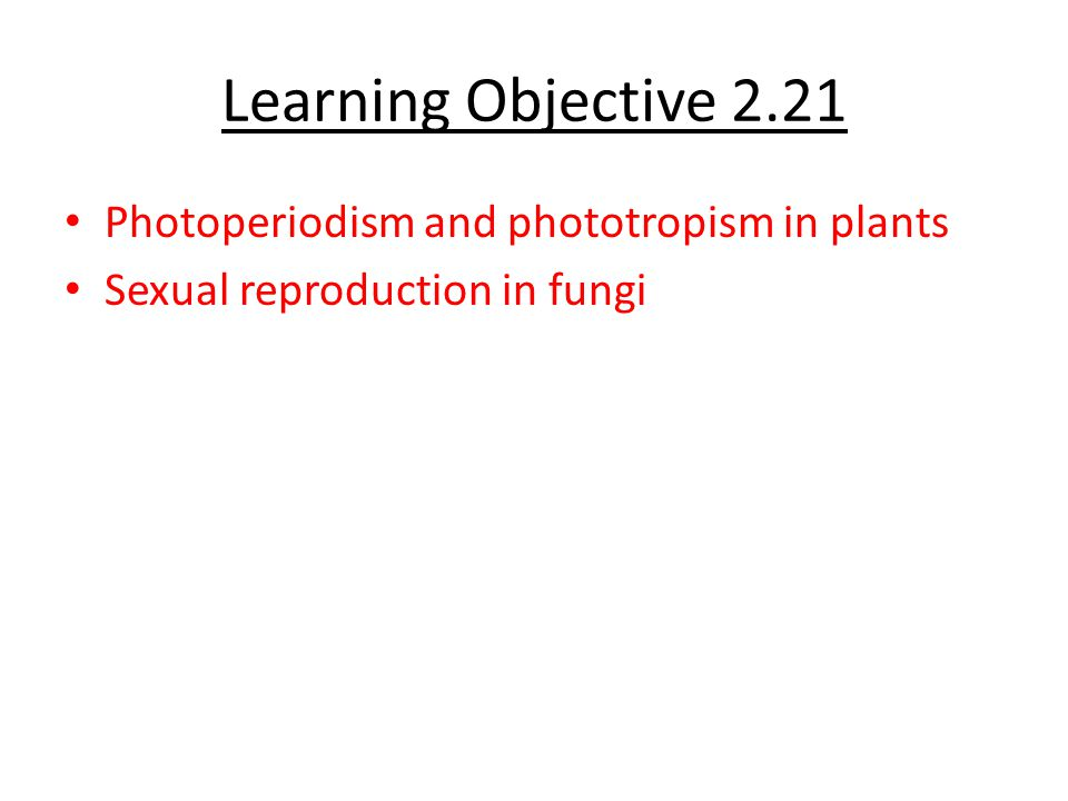 Learning Objective 2.21 Photoperiodism and phototropism in plants