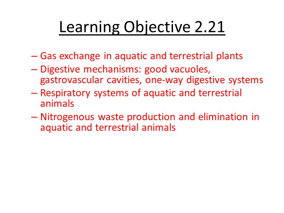 Learning Objective 2.21 Gas exchange in aquatic and terrestrial plants