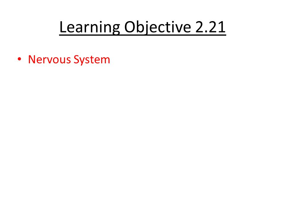 Learning Objective 2.21 Nervous System
