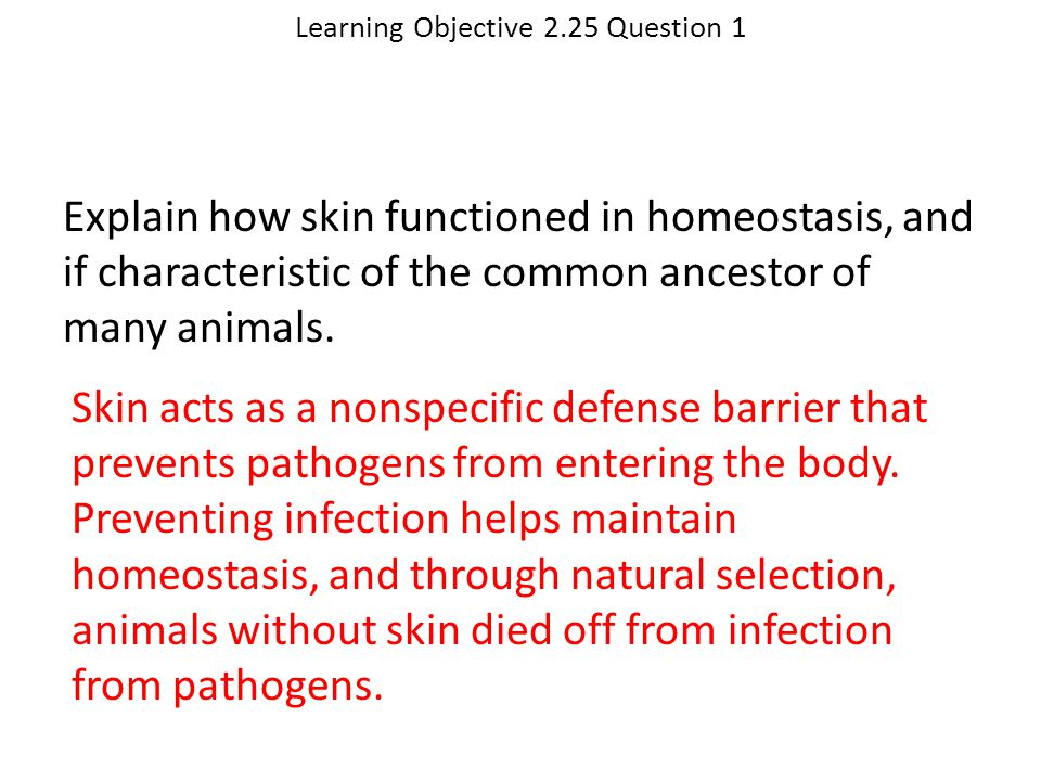 Learning Objective 2.25 Question 1