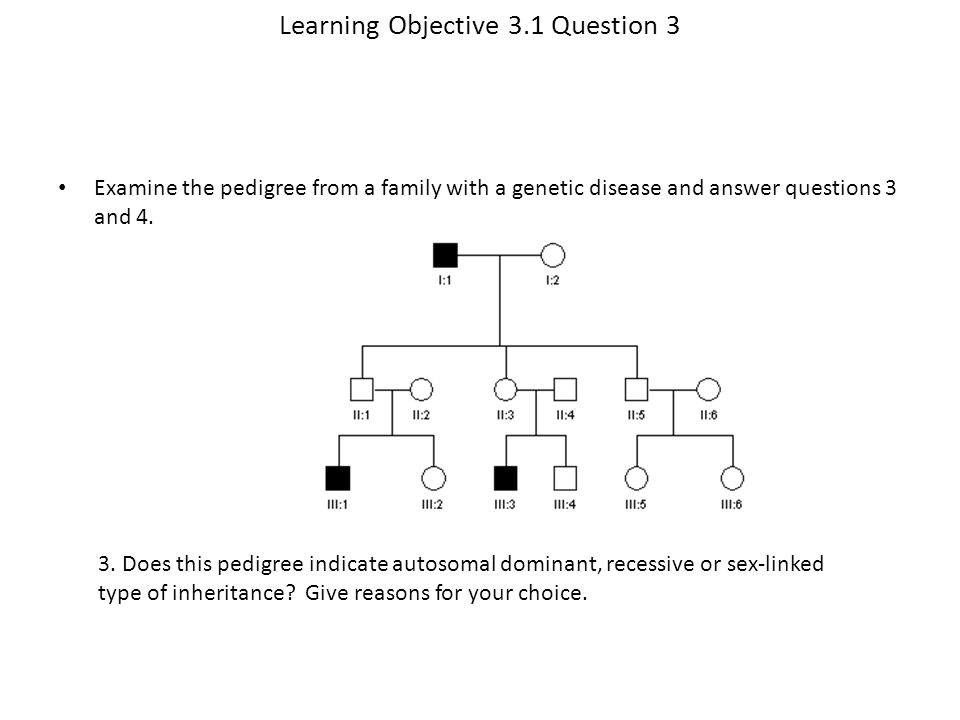 Learning Objective 3.1 Question 3